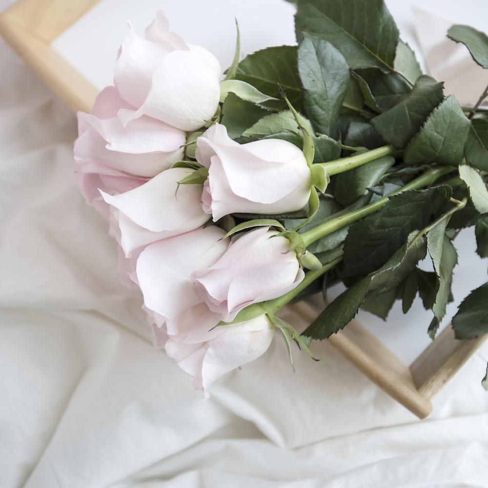 花嫁の学校 まな花